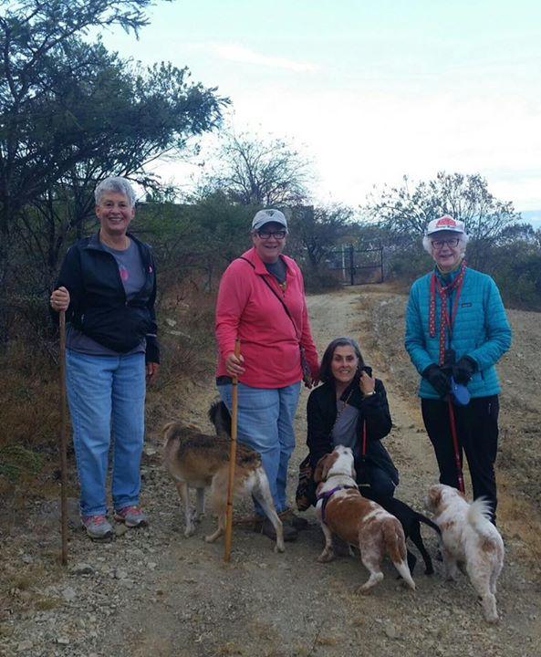 FOMAR alumni on the daily morning dog walk 🐶